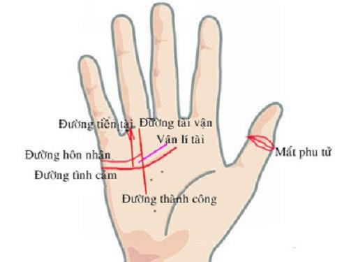 Bàn tay mà có 12 dấu hiệu này, bạn sẽ phú quý giàu sang cả đời, đặc biệt số 10 rất hiếm gặp - Ảnh 4.