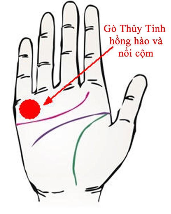 Bàn tay mà có 12 dấu hiệu này, bạn sẽ phú quý giàu sang cả đời, đặc biệt số 10 rất hiếm gặp - Ảnh 5.