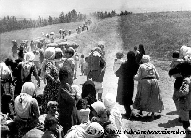 Đớn đau phận người Palestine suốt 7 thập kỷ đi tìm Tổ quốc  - Ảnh 8.