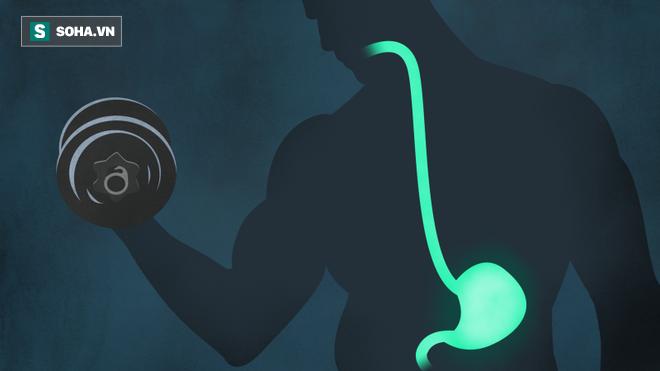 Tập luyện khi bụng rỗng: Tăng hiệu quả hay gây hậu quả? - Ảnh 1.
