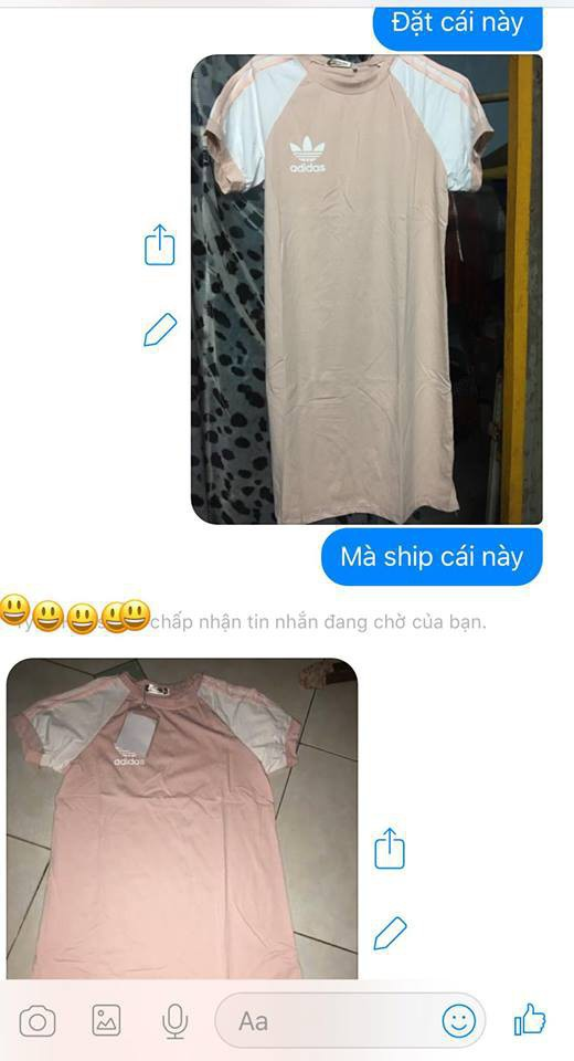 Bỏ 200 nghìn mua váy online khác xa hình, khách còn bị mắng chụp ảnh không có tâm - Ảnh 4.