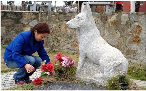 Chuyện cảm động về khoảnh khắc chú chó hy sinh cứu hàng chục người và đàn con nhỏ - Ảnh 3.