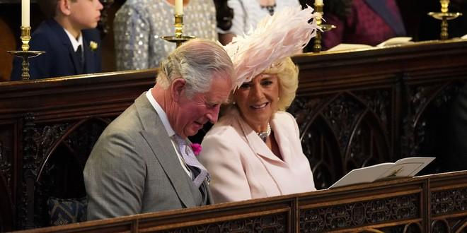 Công nương Diana có mọi thứ trừ điều này và đó là lý do trái tim Thái tử Charles không hướng về bà - Ảnh 2.