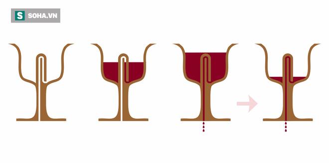 Giải mã chiếc chén ngàn năm biết nuốt rượu: Muốn tiêu sầu đâu có dễ! - Ảnh 2.