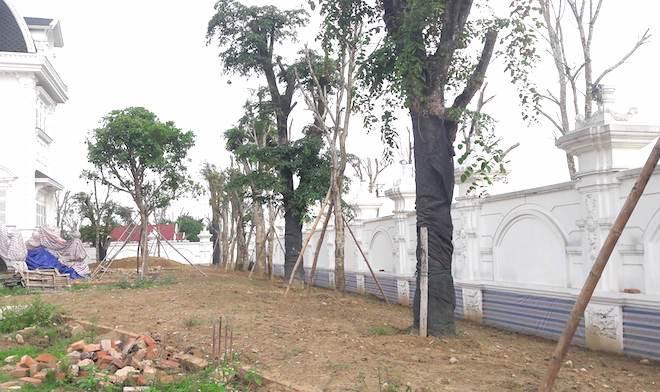 Xôn xao ngôi biệt thự rộng gần 2000m2 của cụ bà tuổi 78 ở Hà Tĩnh - Ảnh 14.