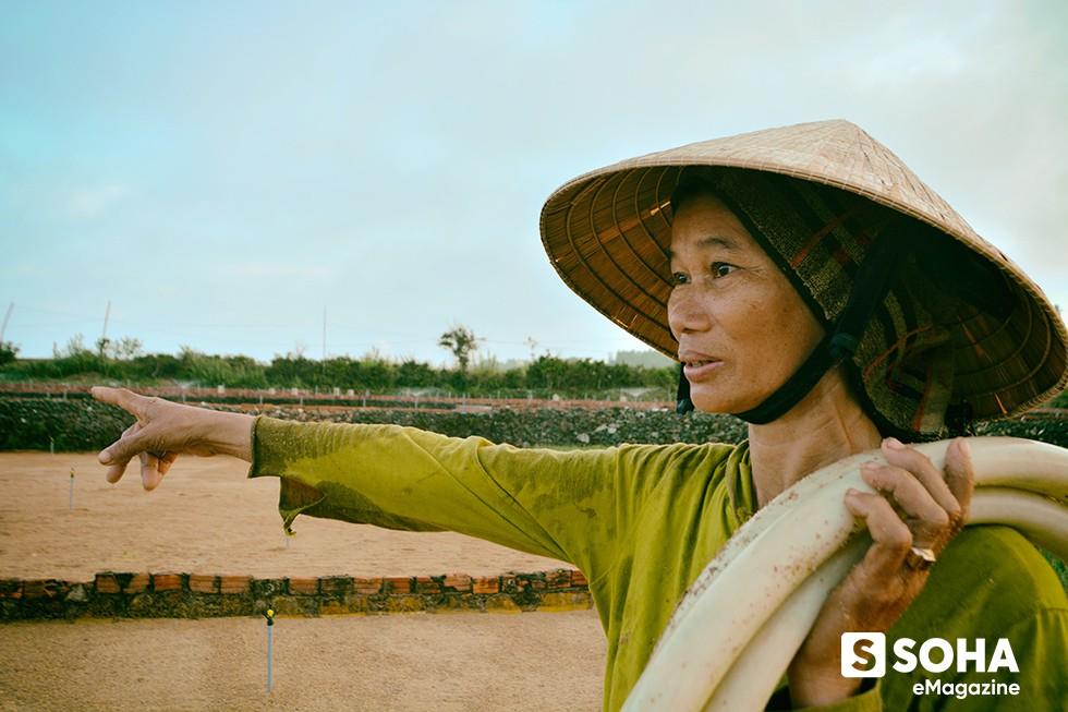 Dự án du lịch tỷ đô ở Lý Sơn và 12 công văn hỏa tốc trong 45 ngày - Ảnh 4.