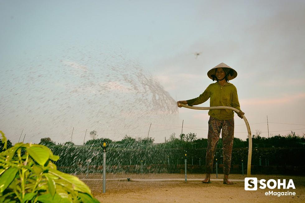 Dự án du lịch tỷ đô ở Lý Sơn và 12 công văn hỏa tốc trong 45 ngày - Ảnh 6.