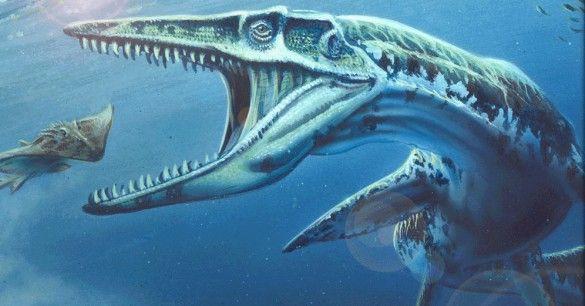 Một loài thủy quái đáng sợ đã ám ảnh người New Zealand và kết quả nghiên cứu lại khiến người dân không thể tin nổi - ảnh 2