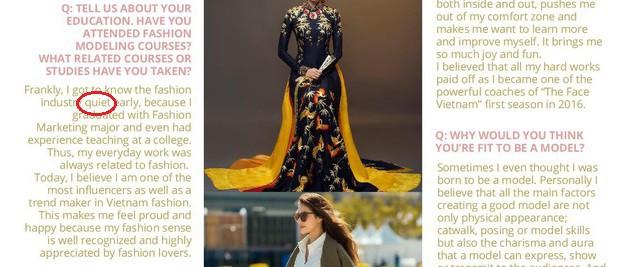 Sự thật về tạp chí danh giá Pháp mời Hoa hậu Phạm Hương làm mẫu trang bìa - Ảnh 7.