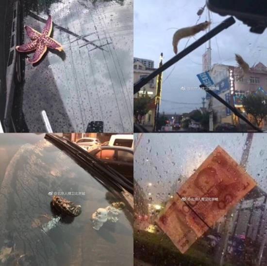 Trung Quốc: Bão lớn khiến hải sản tươi sống trút xuống như mưa trên đường phố - Ảnh 2.