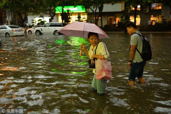 Trung Quốc: Bão lớn khiến hải sản tươi sống trút xuống như mưa trên đường phố - Ảnh 3.