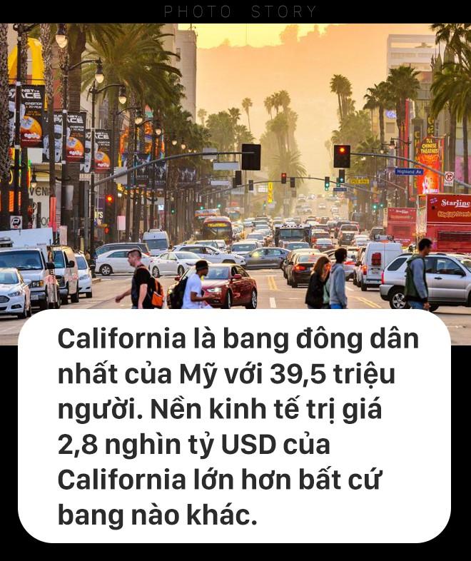 California sẽ ra sao nếu bị tách thành 3 bang? - Ảnh 1.