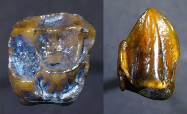 Những phát hiện khảo cổ bí ẩn nhất: Cánh tay rụng rời ra, không tìm thấy phần còn lại - Ảnh 9.