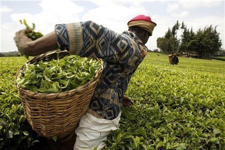 Các Đặc khu Kinh tế biến Đông Phi trở thành thiên đường đầu tư mới  - Ảnh 3.