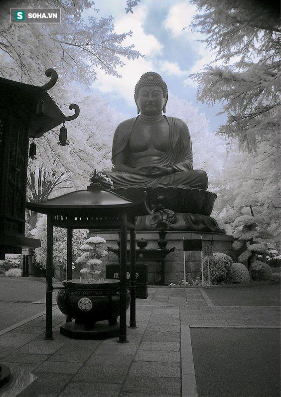 4 câu kệ của nhà Phật, đứa trẻ lên 3 cũng nói được nhưng ông lão 80 có thể không làm được - Ảnh 1.
