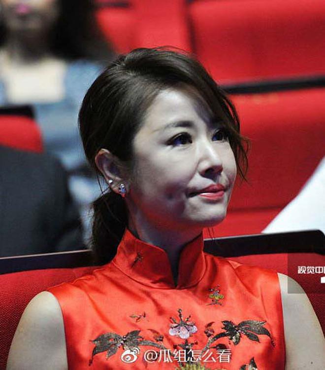 4 bà mẹ nổi tiếng của làng giải trí Hoa Ngữ: Xinh đẹp là thế nhưng cũng nhiều lần nhan sắc khác lạ đến không nhận ra - ảnh 10