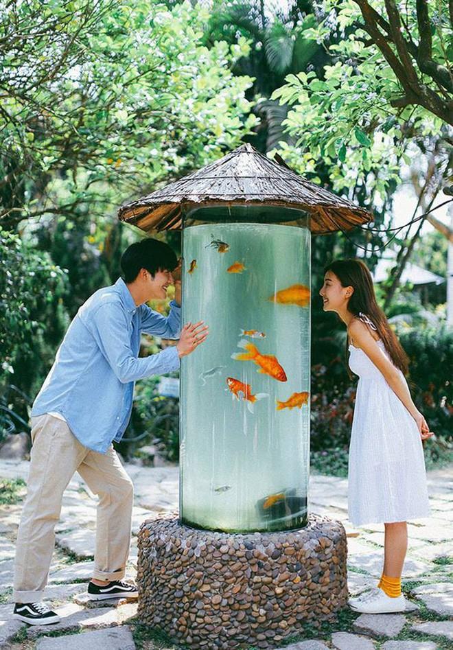 Bộ ảnh cưới đẹp mê đang khuấy đảo MXH: Thần thái quá đỗi tự nhiên, tình và mãn nguyện  - Ảnh 7.