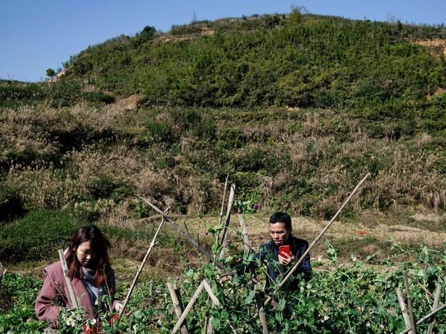 Phía sau dịch vụ cho thuê bạn gái ra mắt gia đình ở Trung Quốc và câu chuyện của cô gái bỏ qua 700 lời mời để chọn 1 chàng trai - Ảnh 12.