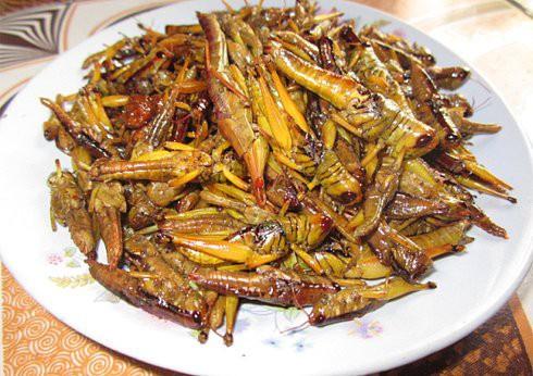 Những món ăn gây ám ảnh nhưng lại là món khoái khẩu của người Việt  - Ảnh 8.