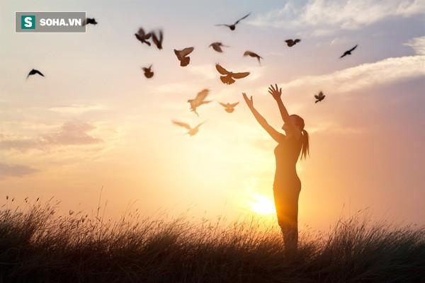 Những bài học giúp cuộc sống thanh thản