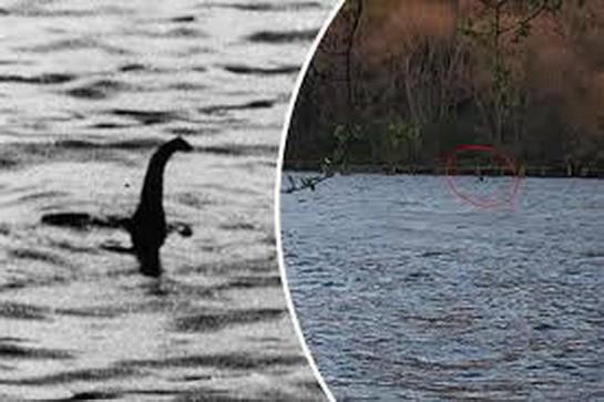 Kế hoạch của Scotland để xử lý quái vật hồ Loch Ness... nếu tìm thấy! - Ảnh 1.