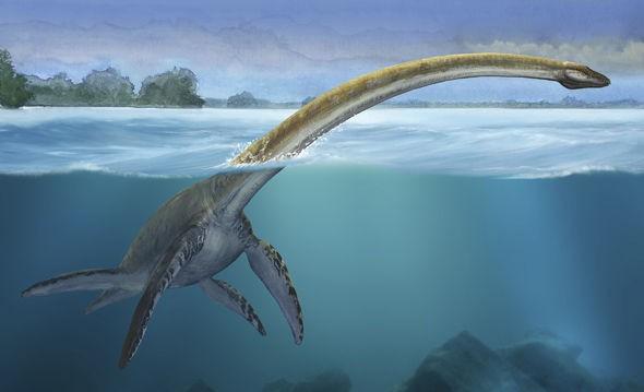Kế hoạch của Scotland để xử lý quái vật hồ Loch Ness... nếu tìm thấy! - Ảnh 3.