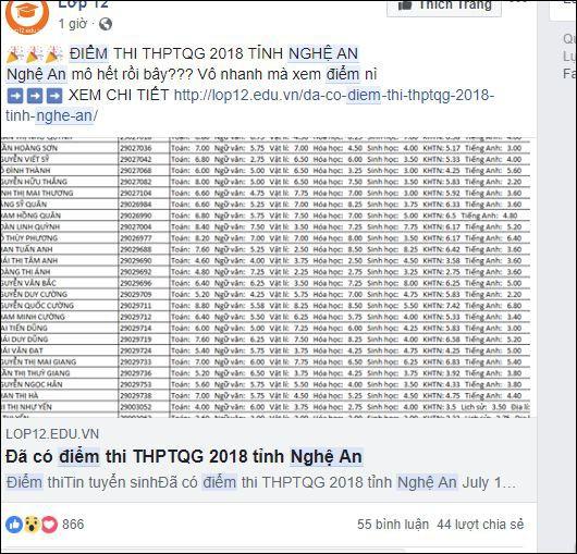 Lộ điểm thi THPT quốc gia tỉnh Nghệ An? - Ảnh 5.