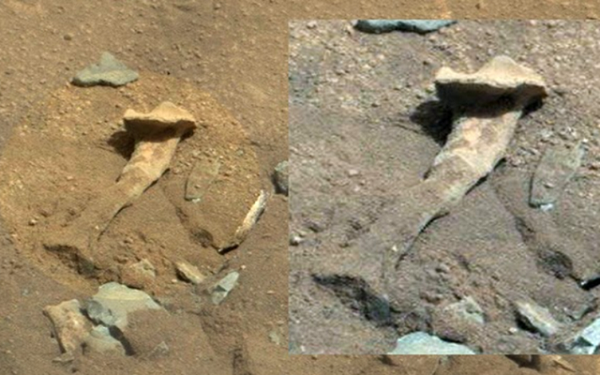 Bí ẩn về bộ xương dài gần 2m nghi của người ngoài hành tinh  - Ảnh 1.