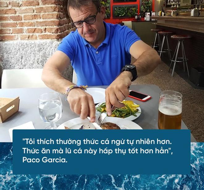 Các nhà khoa học đang thuần hóa cá ngừ vây xanh đang trong diện nguy cấp để có đủ nguyên liệu mà làm sushi - Ảnh 6.