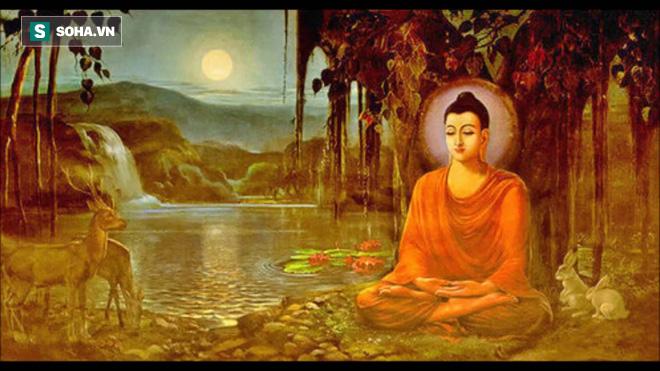 Nước suối đục ngầu, Đức Phật vẫn sai đệ tử lấy về uống và bài học ai cũng nên khắc ghi - Ảnh 1.