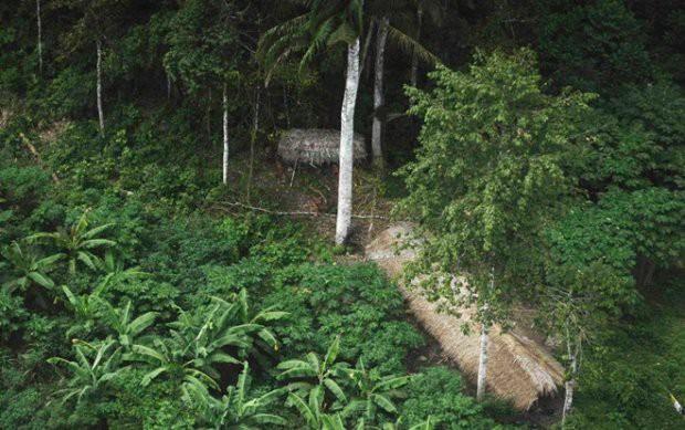 Cận cảnh cuộc sống trong rừng Amazon của các bộ lạc biệt lập với thế giới hiện đại - Ảnh 7.