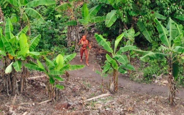 Cận cảnh cuộc sống trong rừng Amazon của các bộ lạc biệt lập với thế giới hiện đại - Ảnh 9.