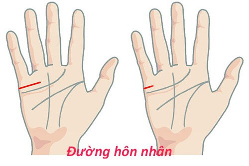 nhan-tuong-hoc