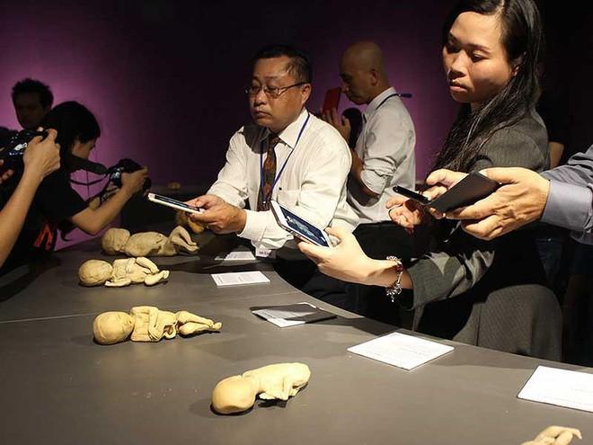 Triển lãm cơ thể người, thai nhi ở TP.HCM làm nóng họp báo Bộ Văn hóa - Ảnh 3.