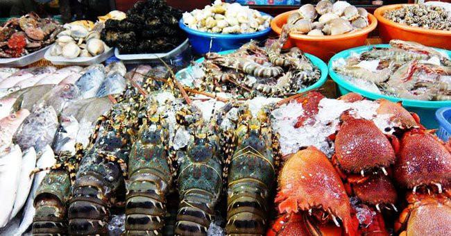 Đi biển ăn thứ này vào thấy khó thở, đau bụng…  không cấp cứu kịp thời có thể mất mạng - Ảnh 1.