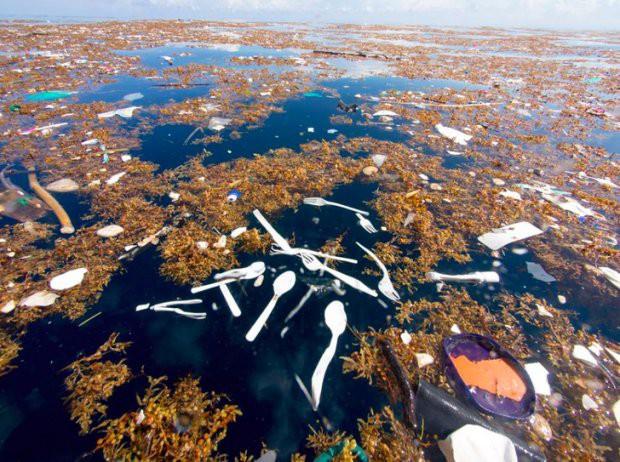 16 bức ảnh về thực trạng ô nhiễm môi trường khiến thế giới giật mình - Ảnh 3.