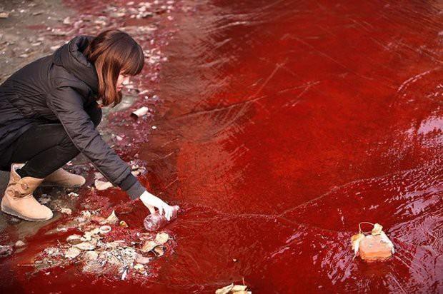 16 bức ảnh về thực trạng ô nhiễm môi trường khiến thế giới giật mình - Ảnh 5.