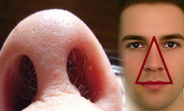 Thói quen cắt, nhổ lông mũi có hại hay vô hại: BS Mỹ giải thích cực chuẩn, ai cũng phục - Ảnh 2.