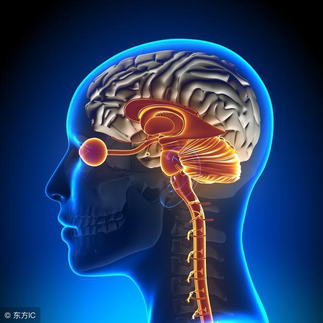 Dấu hiệu điển hình của bệnh thiếu máu não: Hãy cảnh giác sớm để tránh bị đột quỵ bất ngờ - Ảnh 2.