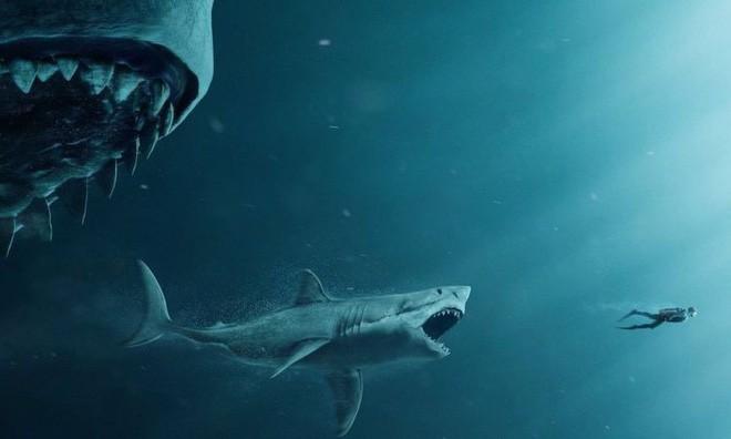 95% đại dương chưa được khai phá, vậy có khả năng nào Megalodon vẫn còn sống? - Ảnh 5.