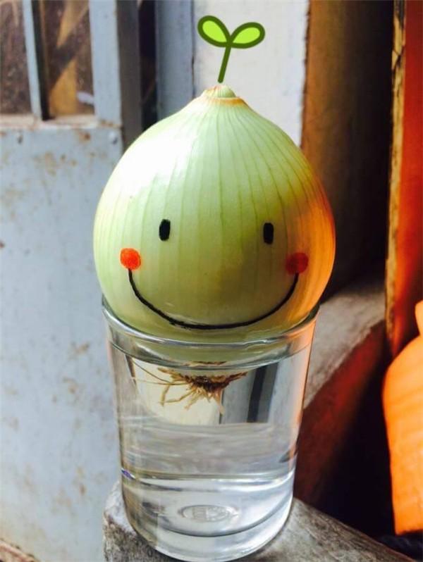Đam mê bonsai nhưng kinh tế eo hẹp, cô nàng trồng củ khoai lang và đem lại kết quả bất ngờ - Ảnh 8.