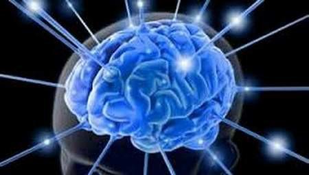 Não điều chỉnh sự cực khoái như thế nào? - Ảnh 1.