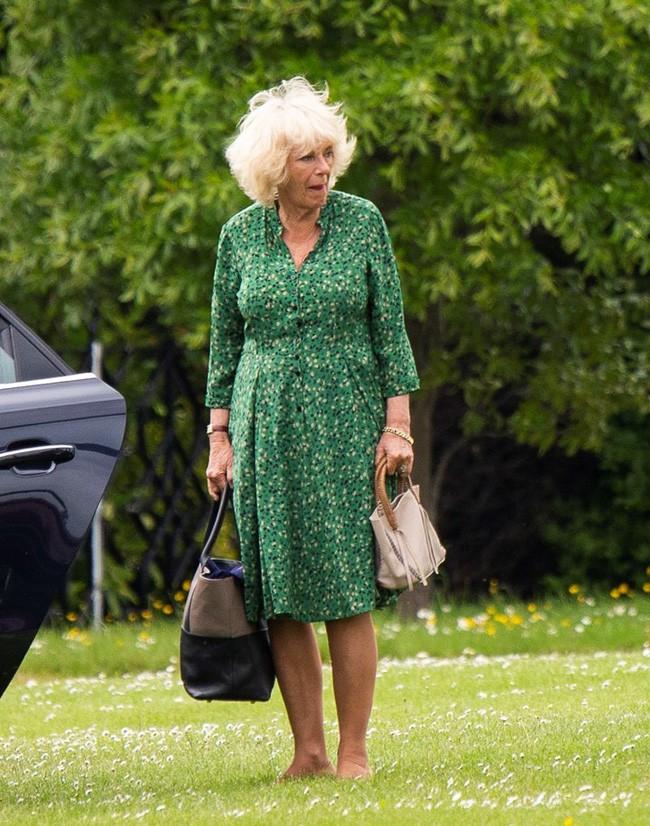 Người hâm mộ hả hê trước thông tin bà Camilla bị chồng đuổi ra khỏi cung điện Hoàng gia, Nữ hoàng Anh từ mặt vì thích gây thù chuốc oán - Ảnh 2.