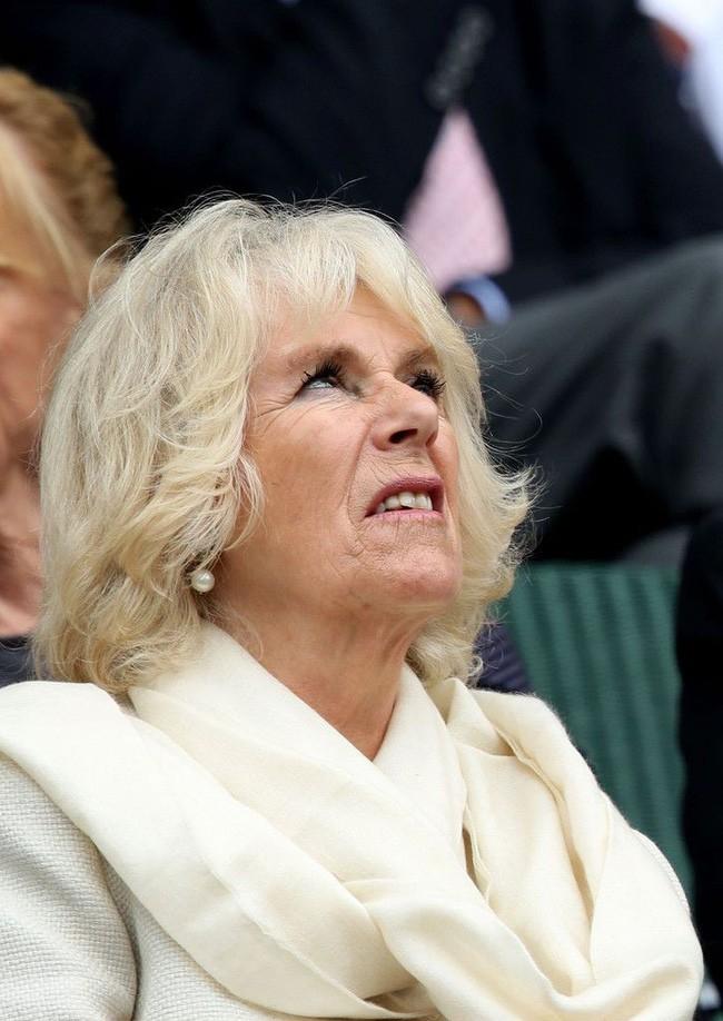 Bà Camilla hiện đang trở thành tâm điểm chú ý của giới truyền thông.