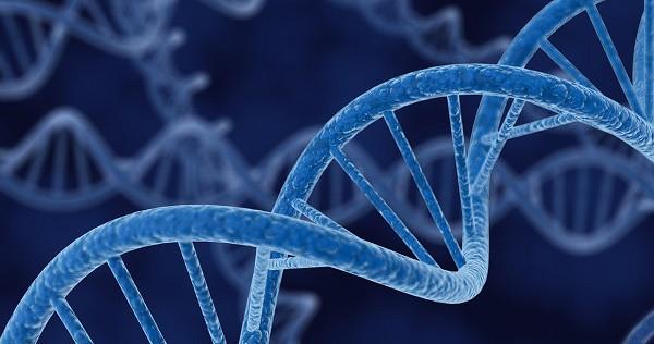 Ung thư hậu môn có di truyền không? - Ảnh 2.