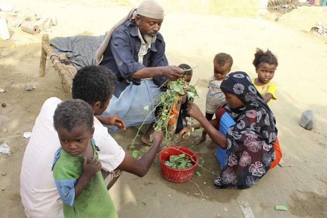 Người dân Yemen phải ăn lá cây vì đói do chiến tranh - ảnh 3