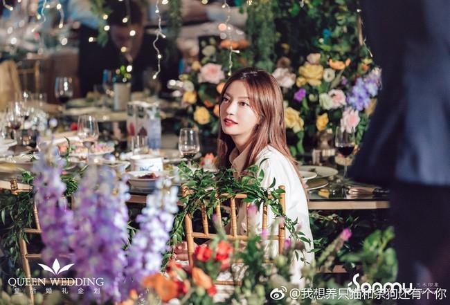 Đám cưới nhỏ bỗng chốc trở thành tiêu điểm chú ý vì sự xuất hiện đẹp hơn hoa của Triệu Vy - Ảnh 3.