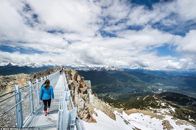 Khám phá                                                          cầu treo vượt                                                          thung lũng cao                                                          nhất Bắc Mỹ -                                                          Ảnh 3.