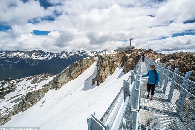 Khám phá                                                          cầu treo vượt                                                          thung lũng cao                                                          nhất Bắc Mỹ -                                                          Ảnh 4.