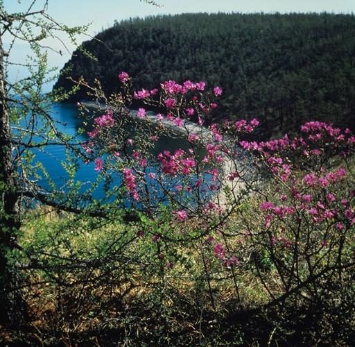 Ảnh: Vẻ đẹp mát lạnh, trong vắt của hồ Baikal ở Siberia (Nga) - Ảnh 6.